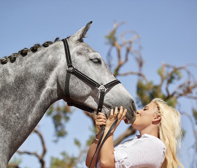 Horse Cremation_websize